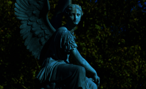 angel_by_ladiespet-d4dc4ur