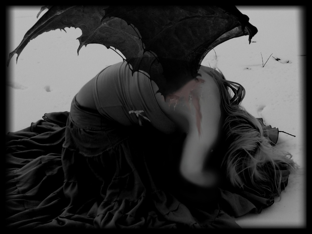 broken_wings_by_nettis_diemsy